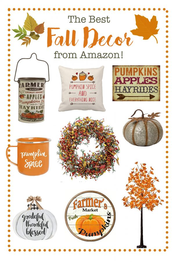 The Best Fall Decor on Amazon!